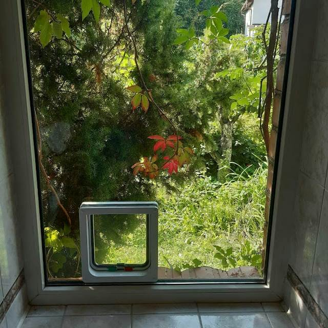 люк для кота в двери стеклопакете